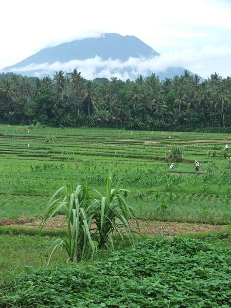 Vulkan-planina Agung - najviši vulkanski vrh na Baliju