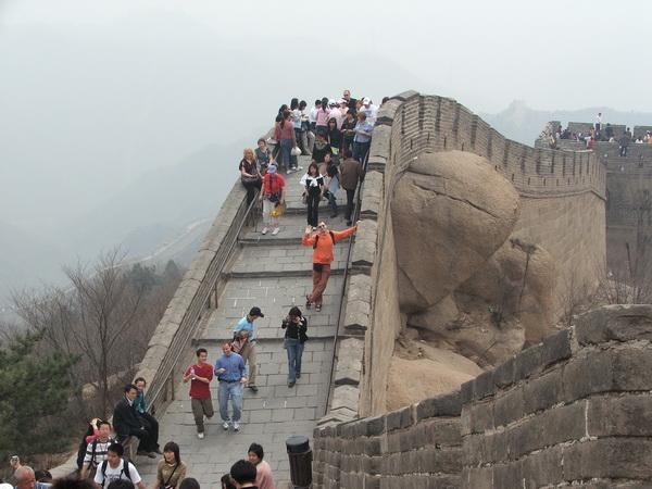 Delić kineskog zida u prirodnom okruženju