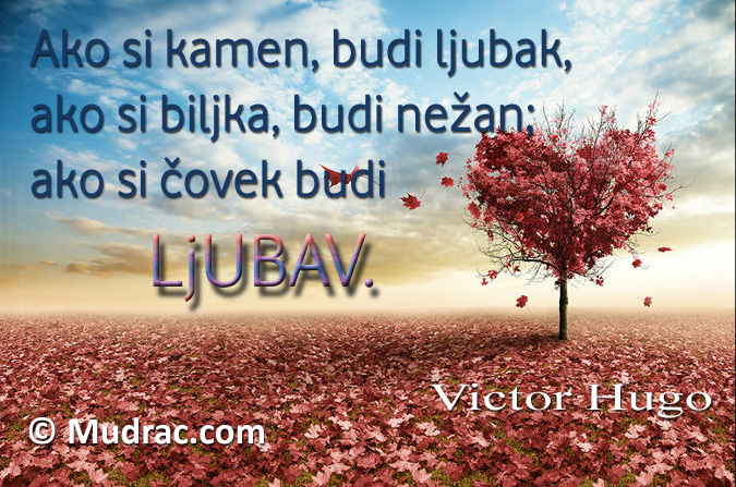 Ljubav Viktor Hugo